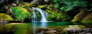 nature-waterfall-timeline-covernature-timeline-cover-